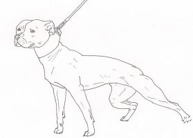 A pit bull sketch by me-and-mojo