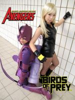 Hawkeye VS Black Canary by tarta0823