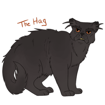 #13 || The Hag || 100 Warriors Challenge by Ribbon-Wren
