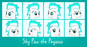 MLP OC Faces - Sky Paw by outlaw4rc