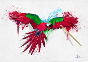 Parrot Artwork by HeliX4