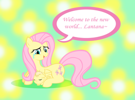 Fluttershy's Little Flower by Dandric101