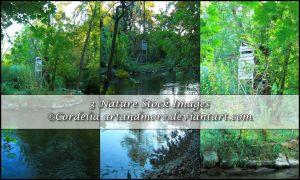 German Nature Stock Images 2 by ArtandMore