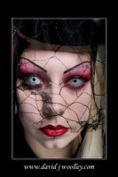 +lace+ by Countess-Grotesque