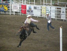 Bronc Ridin by jltrafton