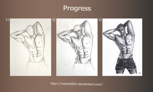 Progress: Torso by hannie001