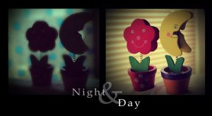 Happy Together Night and Day by charmay13