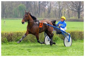 race 3 by paula2206-photo