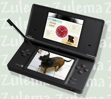 Nintendogs:Mutt and Friends GP by Zulema