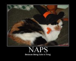 Motivational Poster - Naps by mistressmaxwell