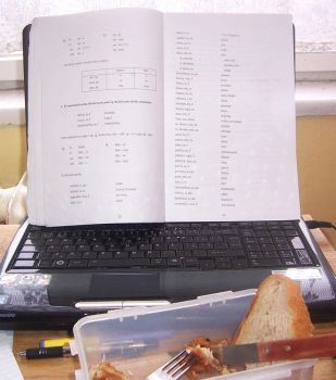 The only way to study D: by Shel-chan