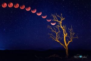 Blood Moon Rising by Questavia