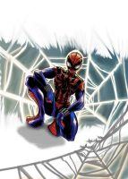 spiderman by SketchSchmidt-Art