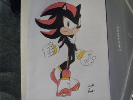 Shadow The Hedgehog by DarkGamer2011