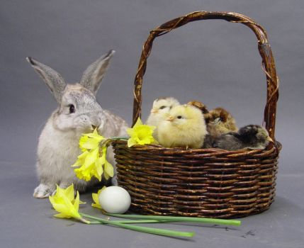 Easter stock 2 by InKi-Stock