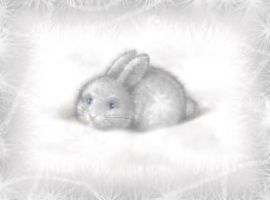 Snow rabbit by Victoria-Poloniae