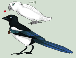The Magpie and the Lady-Bird by DasBella