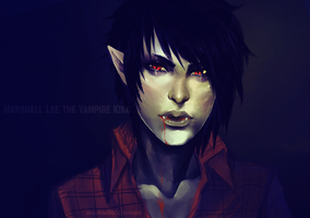 the vampire King by animegirl000
