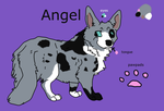 My first corgi OC- Angel Official Ref Sheet by DoubleTroubleWolves