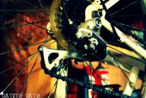 Bicycle wheels.. by GatitoGato