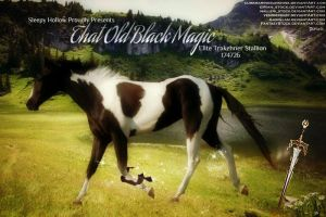 That Old Black Magic by JuneButterfly-stock