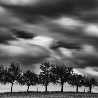 -Nine friends with praying hands- by Janek-Sedlar