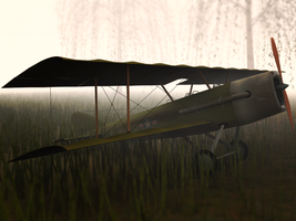 Biplane Abandoned by netsui