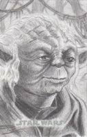 Star Wars Chrome Perspectives - Yoda by DenaeFrazierStudios