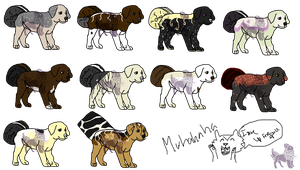 Canineo Adopt Batch 1- 4 LEFT - Open to all!! by AusieOtterPie