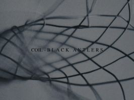 Coil-BlackAntlers-desktop by abirato