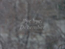 Bye bye, December. by yo04