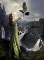 Where Eagles Reign by Child0fBodom
