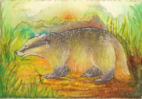 Tall Grass Tunnelling ACEO by Redwall151