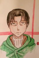 SnK: Levi by WingedAvenger