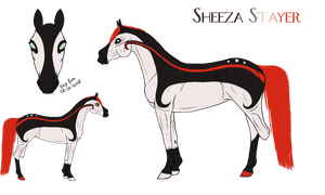Sheeza Stayer ref. by Cerulean-Sky-Stables