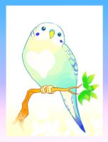 Rainbow Parakeet by macawnivore