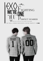 140208. We can do it ourselves. EXO fighting by MinH-kute