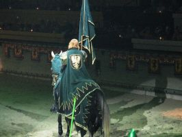 Medieval Time green Knight 2 by chavi-dragon