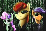Cmc Matrix by DLowell