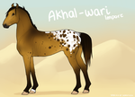 Akhal-Wari Import 085 by horsy1050