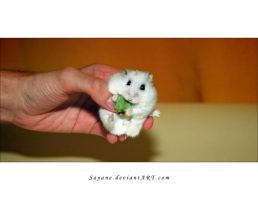 Christmas Hamster Captured by Sayane