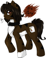 Me Pony by Fire-Girl872