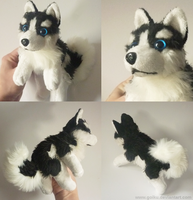 SOLD Siberian Husky BW - Small floppy by goiku