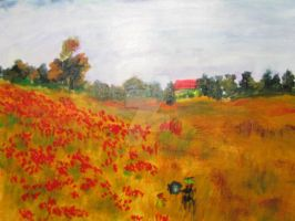poppy field by Enigma-thats-me
