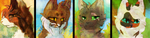 WSC leaders gift icons by SunnPie