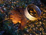 One Ring by Namyi-Pictures