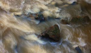River Flow by Syakster