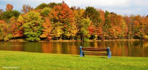 Tranquil Autumn by namine1245