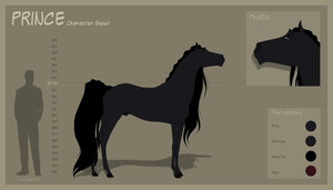 Prince - Character Sheet by Wild-Hearts