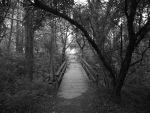 wooden walk bridge by jaydig